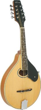 Ashbury AM50 Mandolin